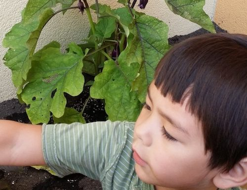 Close-up of a child in the Children's Garden at MHCM