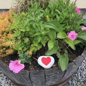 hand-painted peace rock in container garden